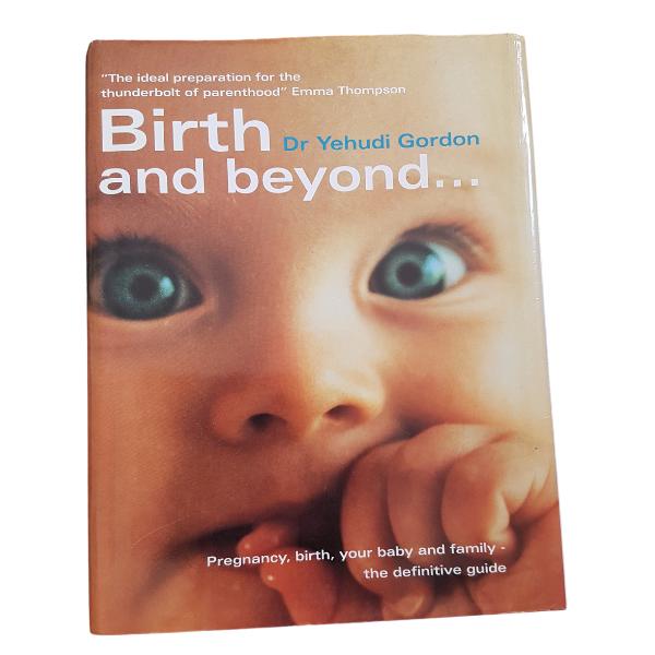 Birth and Beyond – Yehudi Gordon