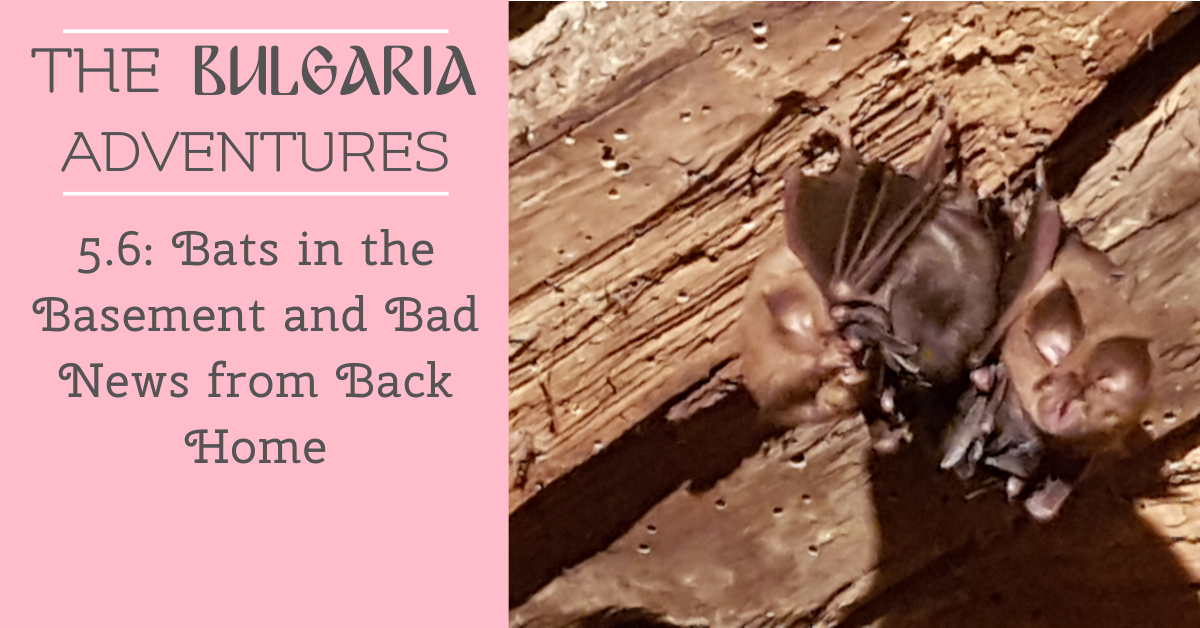 The Bulgaria Adventures 5.5: